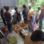 華之井市場六月場所