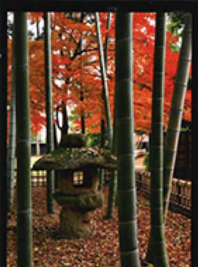 旧吉田家住宅の四季と想い出の情景